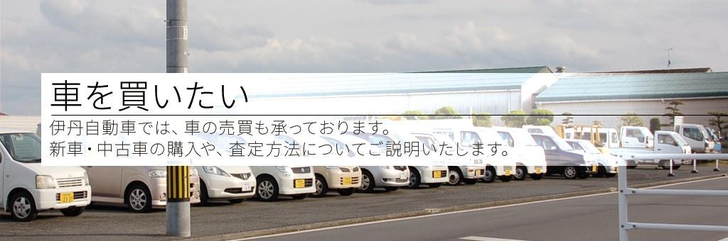 車を買いたい――伊丹自動車では、車の売買も承っております。新車・中古車の購入や、査定方法についてご説明いたします。